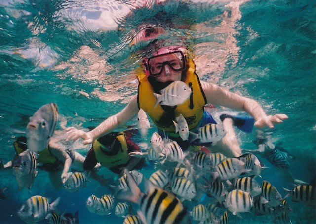 Best Snorkeling in the U.S. Virgin Islands